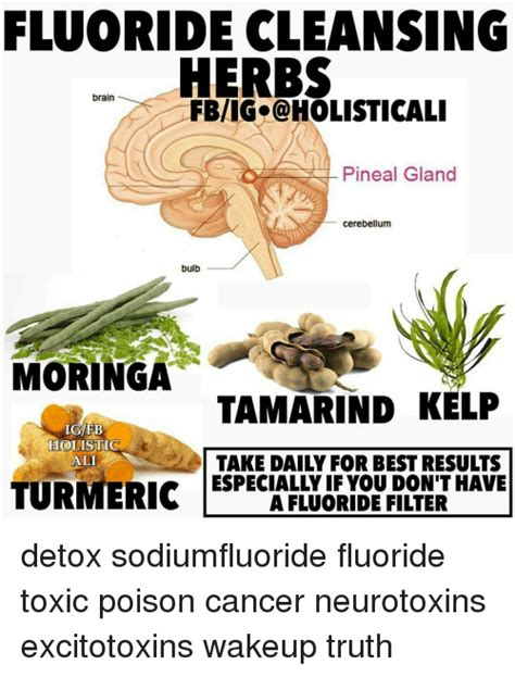 Essential Oils For Floride Detox by 25 Best Memes About Tamarind Tamarind Memes