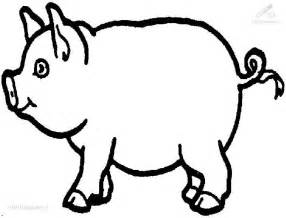 pig colour pic colouring pages
