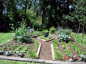 pics photos container vegetable garden
