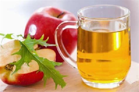 Cuka Apel Tahesta 300ml 2 3 cara untuk meminum cuka apel