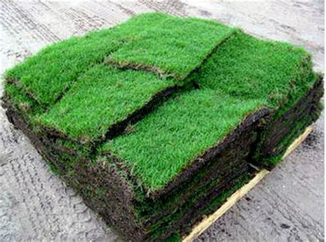 Residential Carpet Squares by The Grass Man Grass For Sale