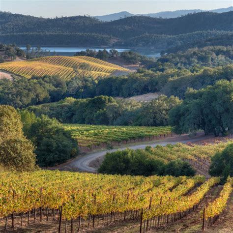 Photo Napa Valley by Best Napa Valley Wineries Vineyards Tours Food Wine