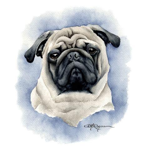 watercolor pug pug print by watercolor artist dj rogers