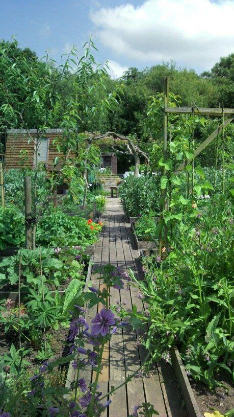 Kleiner Garten Anlegen 4669 photo only feed the family vegetable garden with raised