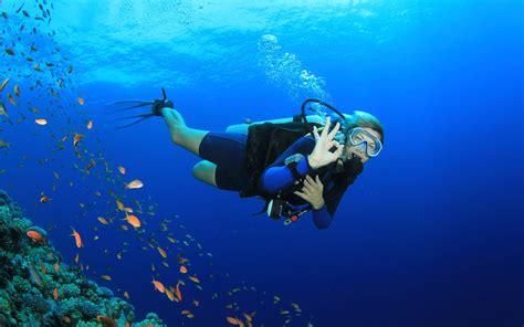 dive in amazing costa rica scuba diving flamingo resort