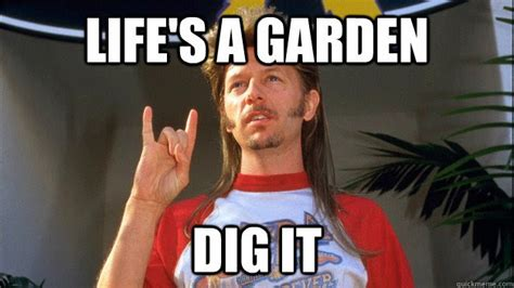 Can You Dig It Meme - joe dirt quotes quotesgram