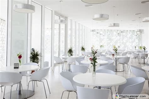 European Home Interior Design 25 cafe interior design photos elsoar