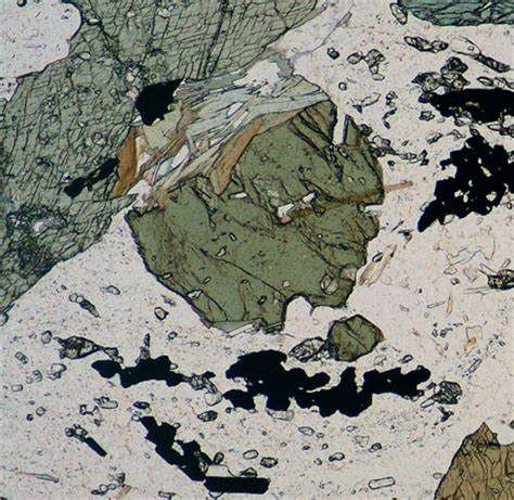 mineral thin section identification hornblende in thin section related keywords hornblende