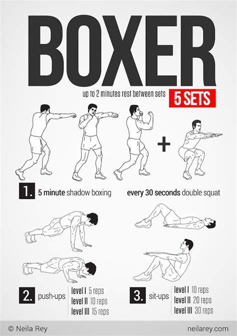 boxer workout fitness workout workoutwednesday boxing