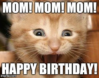 Happy Birthday Mom Meme - excited cat viral memes imgflip