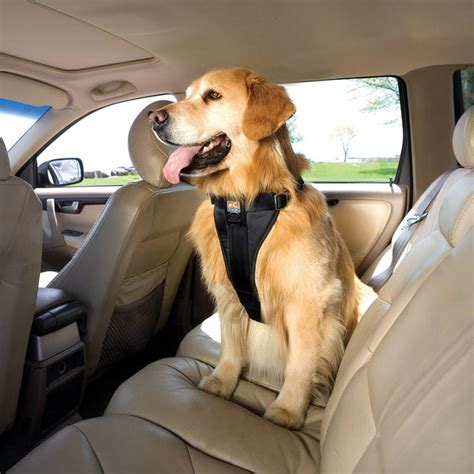 kurgo car seat belt kurgo tru fit smart car walking harness 22 49