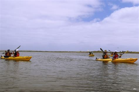 canoes adelaide canoe the coorong adelaide