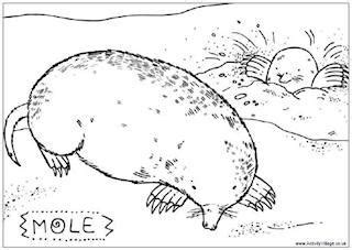 underground animals coloring page moles