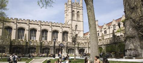 List Of Universities In Chicago For Mba by Cus Trends Report Chicago Area Colleges New Hub Of