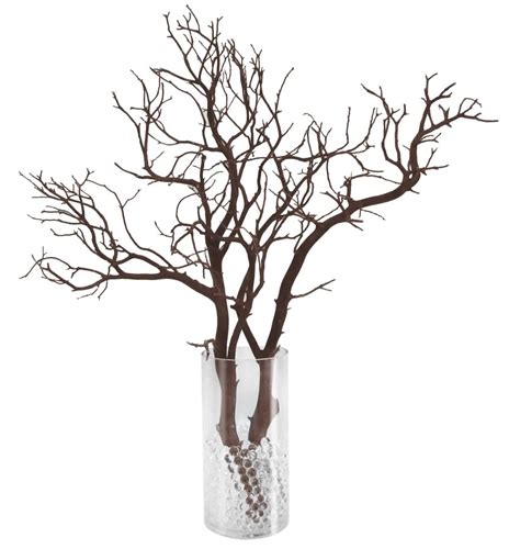 Tall Cylinder Vases Manzanita Branch Party Pack 12 Complete Centerpieces