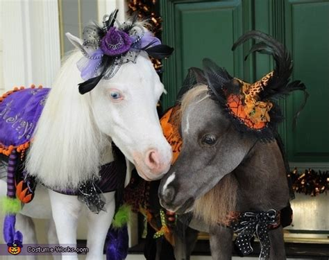 tiny horses  halloween costumes original diy costumes