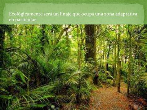 la selva tropical selva tropical