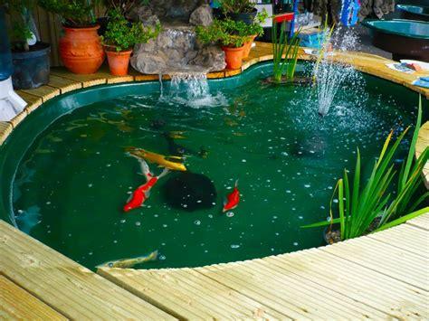 membuat hidroponik dan kolam ikan budidaya ikan koi di kolam sekaligus sebagai tema desain