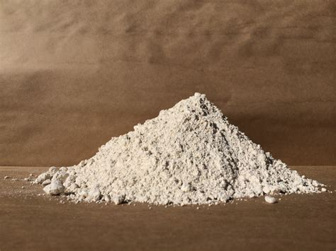 10 Uses For Diatomaceous Earth 10 Grid Uses For Diatomaceous Earth
