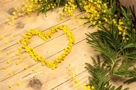 festa della donna fiore tema sull 8 marzo riflessioni sulla festa della donna