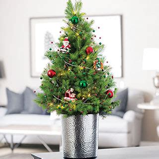 live decorated trees live decorated tabletop trees from jackson perkins