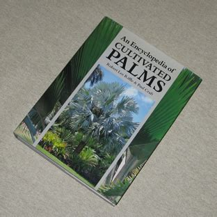 encyclopedia of cultivated palms p 233 pini 232 re palmaris vpc d agaves yuccas palmiers bananiers livres botaniques