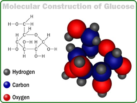 carbohydrates molecule 301 moved permanently
