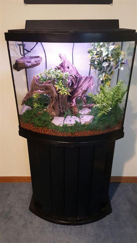crested gecko cage setup  gallon tank tree frog