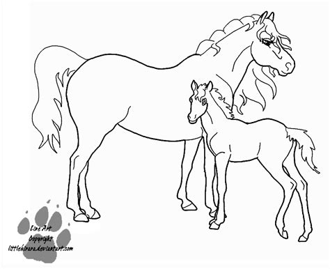 Coloring Pages Of Horses And Foals by Foal Coloring Pages Coloring Home