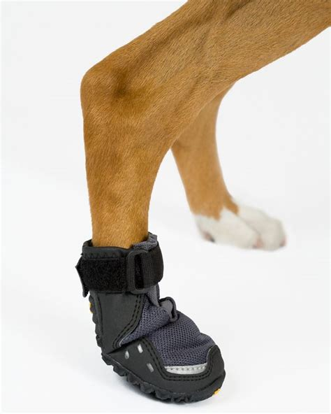 puppy boot c best boots for or cold weather and they
