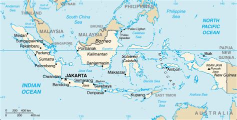 Map of Indonesia. Terrain, area and outline maps of