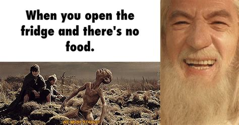 lord of the memes 15 memes that will make any true lord of the rings fan lol