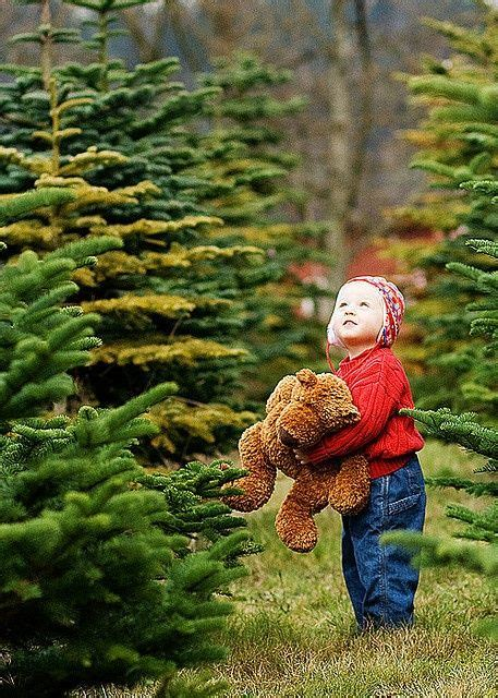 christmas tree farm tomball 1000 ideas about toddler photography on photography toddler