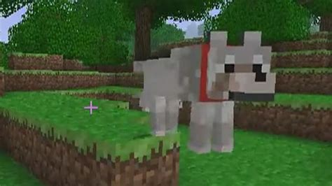 puppy minecraft my big project minecraft project