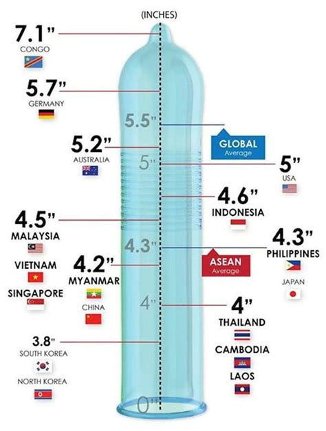 average size of this chart of average penls size around the world may