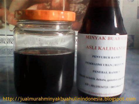 Minyak Rambut Kayu Belitung Minyak Anti Uban Menyuburkan Rambut jual murah minyak buah ulin asli dari kalimantan indonesia penghitam rambut alami