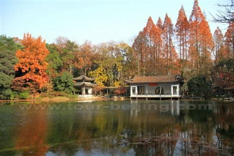 places   autumn leaves  hangzhou china