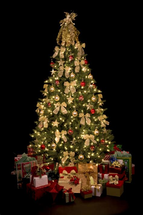 christmas tree image christmas tree fire safety fire 9 prevention