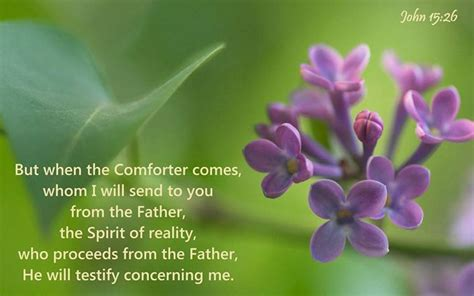 i will send a comforter john 15 16 but when the comforter comes whom i will send