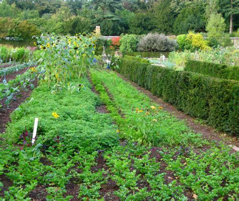 growing vegetable garden garden landscape png hi res 1080p hd