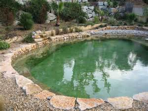 Natural Pool by How To Build Your Own Natural Swimming Pool Terasrakenne Com