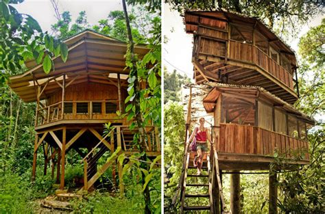 treehouse community this tree house community in costa rica is the new