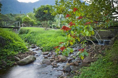 beleza da natureza fotos e imagens a comunh 227 o perfeita com a natureza est 226 ncia ribeir 227 o grande