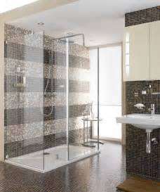 shower bar shower combo contemporary raleigh by