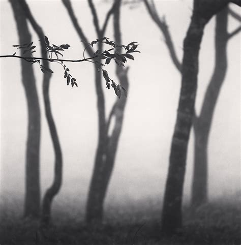 forms of japan michael g gibson gallery michael kenna forms of japan