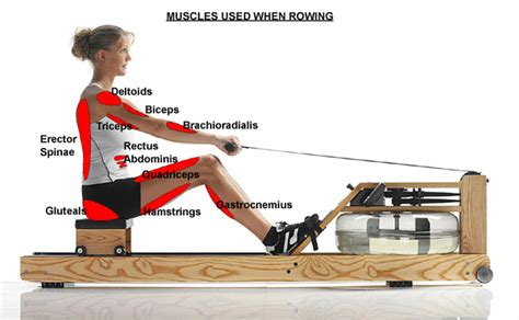 Gloves For Rowing 2 Killer Rowing Workouts A Well