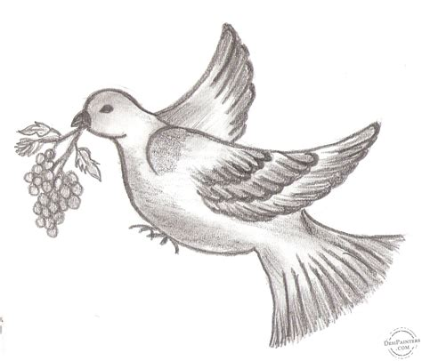 libro bird art drawing birds pictures of birds for drawing bird sketch this picture was submitted by priyanka l 225 piz