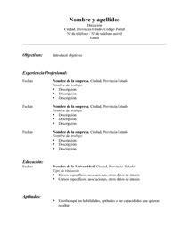 curriculum vitae curriculum vitae template en espanol