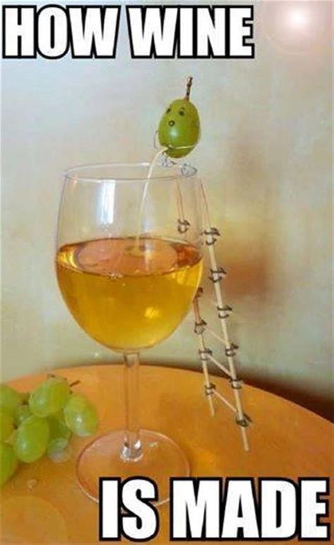 Wine Glass Meme - grape peeing in wine glass funny memes funnymemes