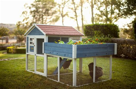 diy backyard chicken coop 75 creative and low budget diy chicken coop ideas for your backyard decoredo